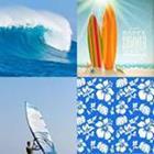4 Lettres Niveau Surf