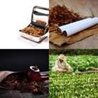 5 Lettres Niveau Tabac