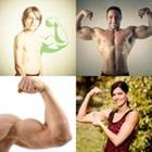6 Lettres Niveau Biceps