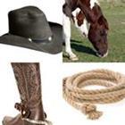 6 Lettres Niveau Cowboy