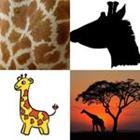 6 Lettres Niveau Girafe