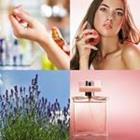 6 Lettres Niveau Parfum