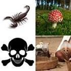 6 Lettres Niveau Poison