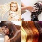 7 Lettres Niveau Cheveux