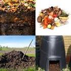 7 Lettres Niveau Compost