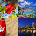 8 Lettres Niveau Honolulu