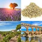 8 Lettres Niveau Provence