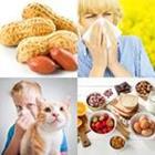 9 Lettres Niveau Allergies