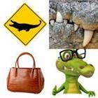 9 Lettres Niveau Crocodile
