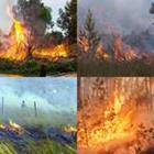 9 Lettres Niveau Incendies